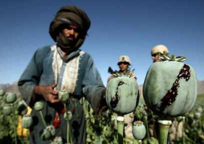 Guarding the Opium Harvest